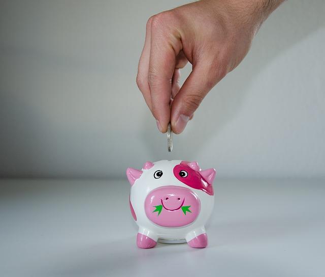 economiseste, bani, pusculita