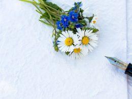 stilou, flori, mesaj